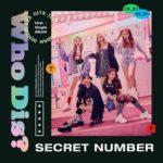 SECRET NUMBER - Who Dis