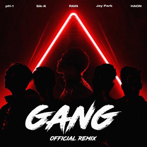 GANG (깡) Official Remix