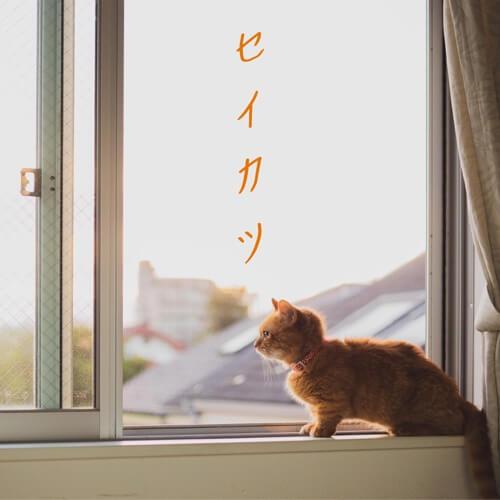 おさるのうた - セイカツ Single